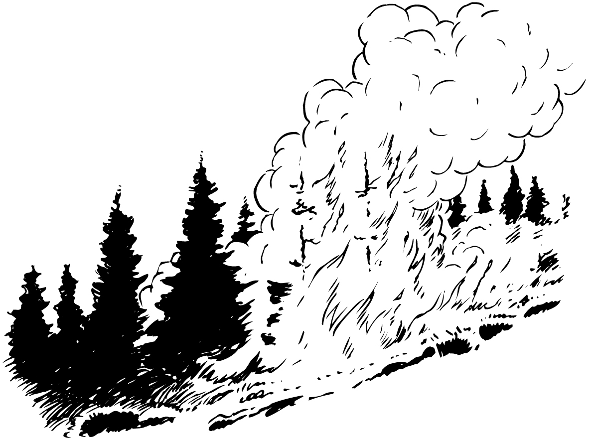 forest fire clipart clipground