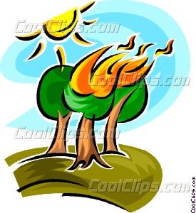 forest fire Vector Clip art.