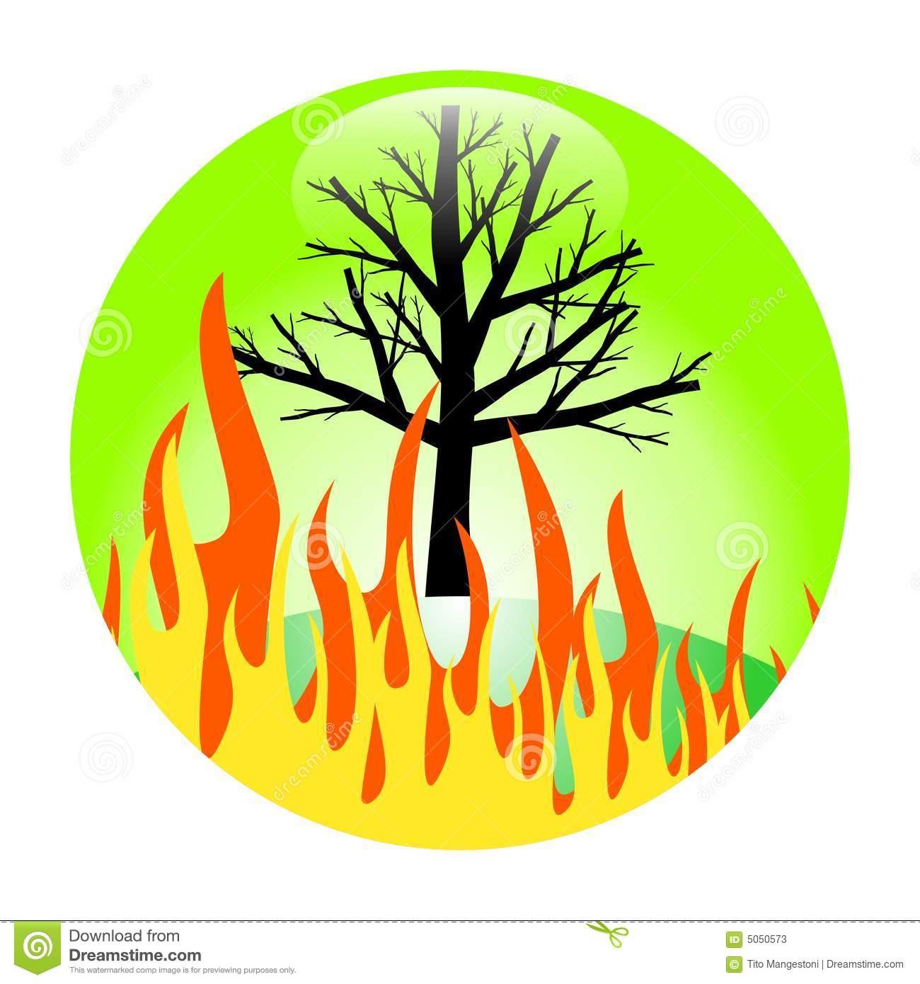Forest Burn Stock Photos.