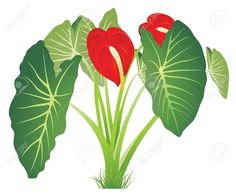 Jungle flower clipart.