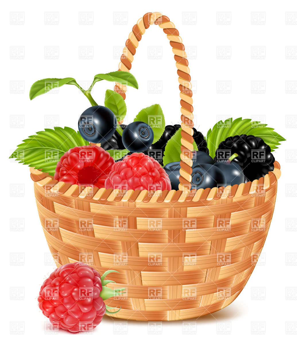 Ripe forest berries in the basket Vector Image #4962.