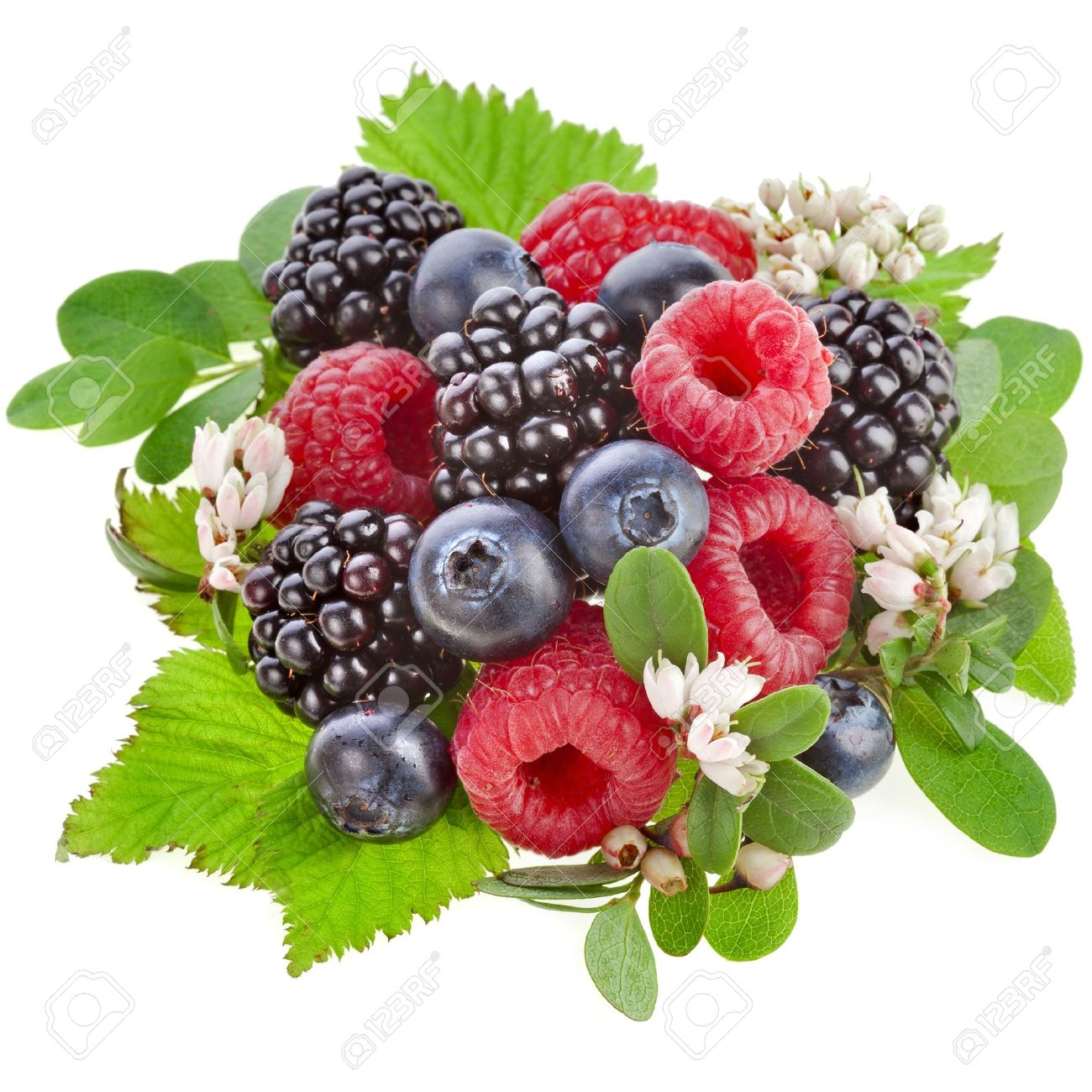 Fresh Forest Berries With Flower Isolated On A White Background.