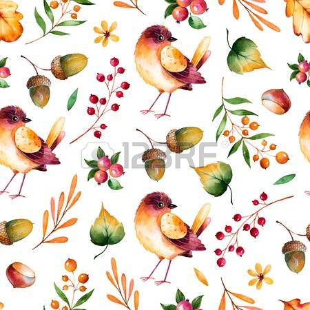 20,353 Forest Fruits Stock Illustrations, Cliparts And Royalty.