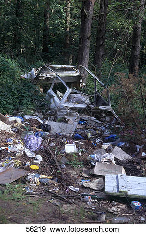 Stock Photograph of Car wreck and litter in forest 56219.