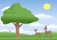 Young Deer Fawn Forest Meadow Stock Illustrations.