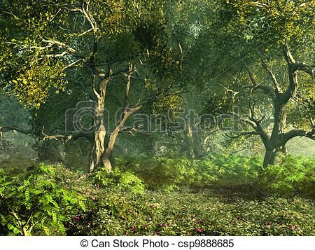 Stock Illustrations of Wooded Meadow.