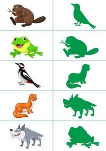 forest animals shadow matching.