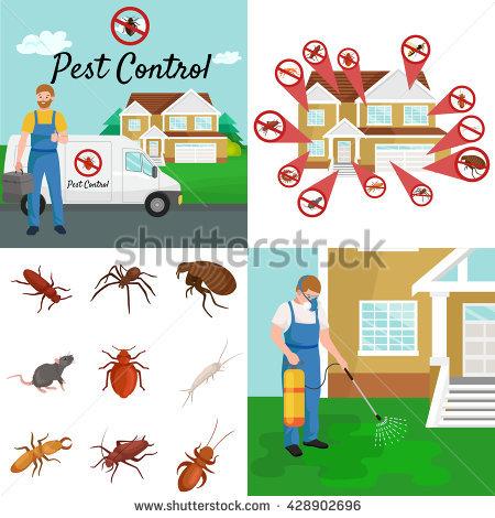 Pest Stock Photos, Royalty.