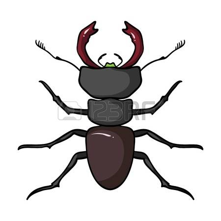 5,052 Small Legs Stock Illustrations, Cliparts And Royalty Free.