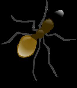 Pest Clipart.