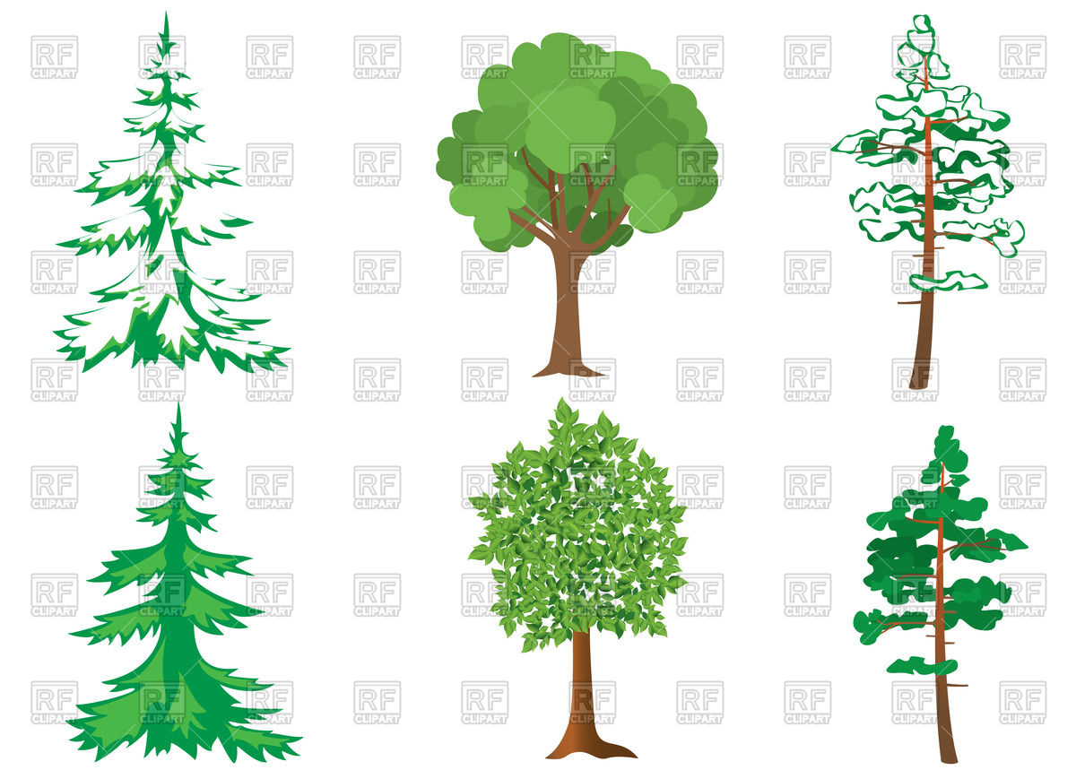 Set of forest trees Vector Image #66485.