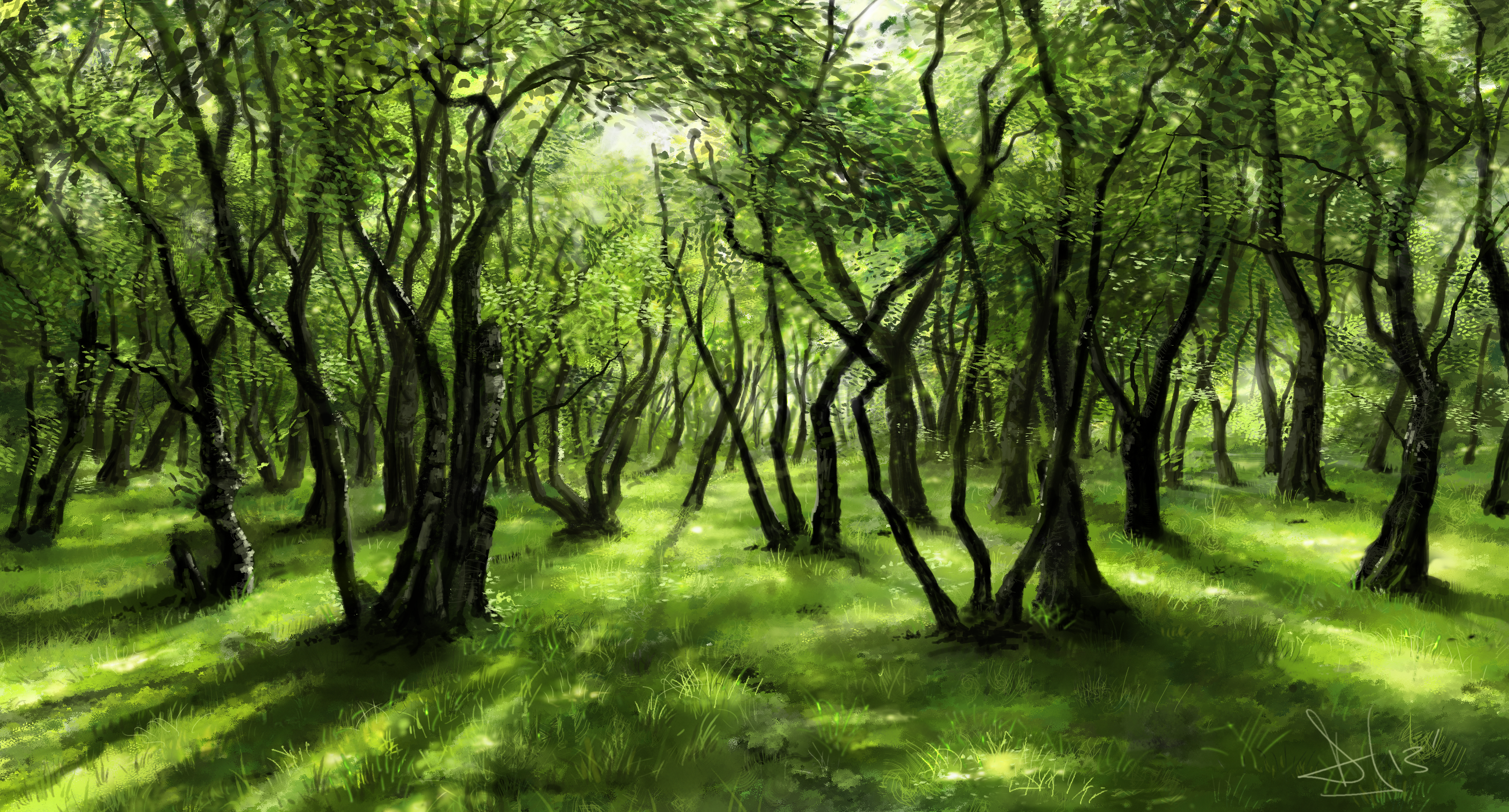 Forest PNG HD Images Transparent Forest HD Images.PNG Images..