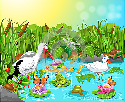 Clipart pond animals.