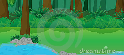 Jungle Pond Stock Illustrations.