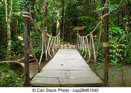 Stock Photo of rope bridge over the river in forest, way.
