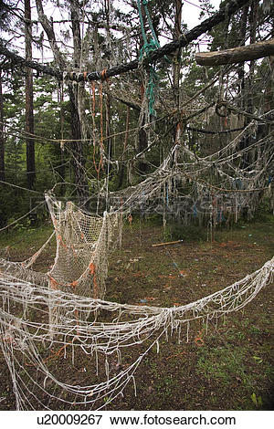 Picture of Ropes, Nets, Forest, Outdoors, Day u20009267.
