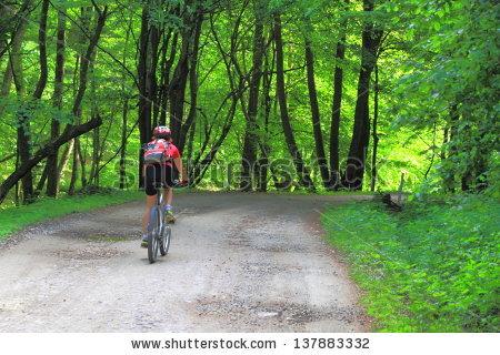 Bike Path Stock Photos, Royalty.