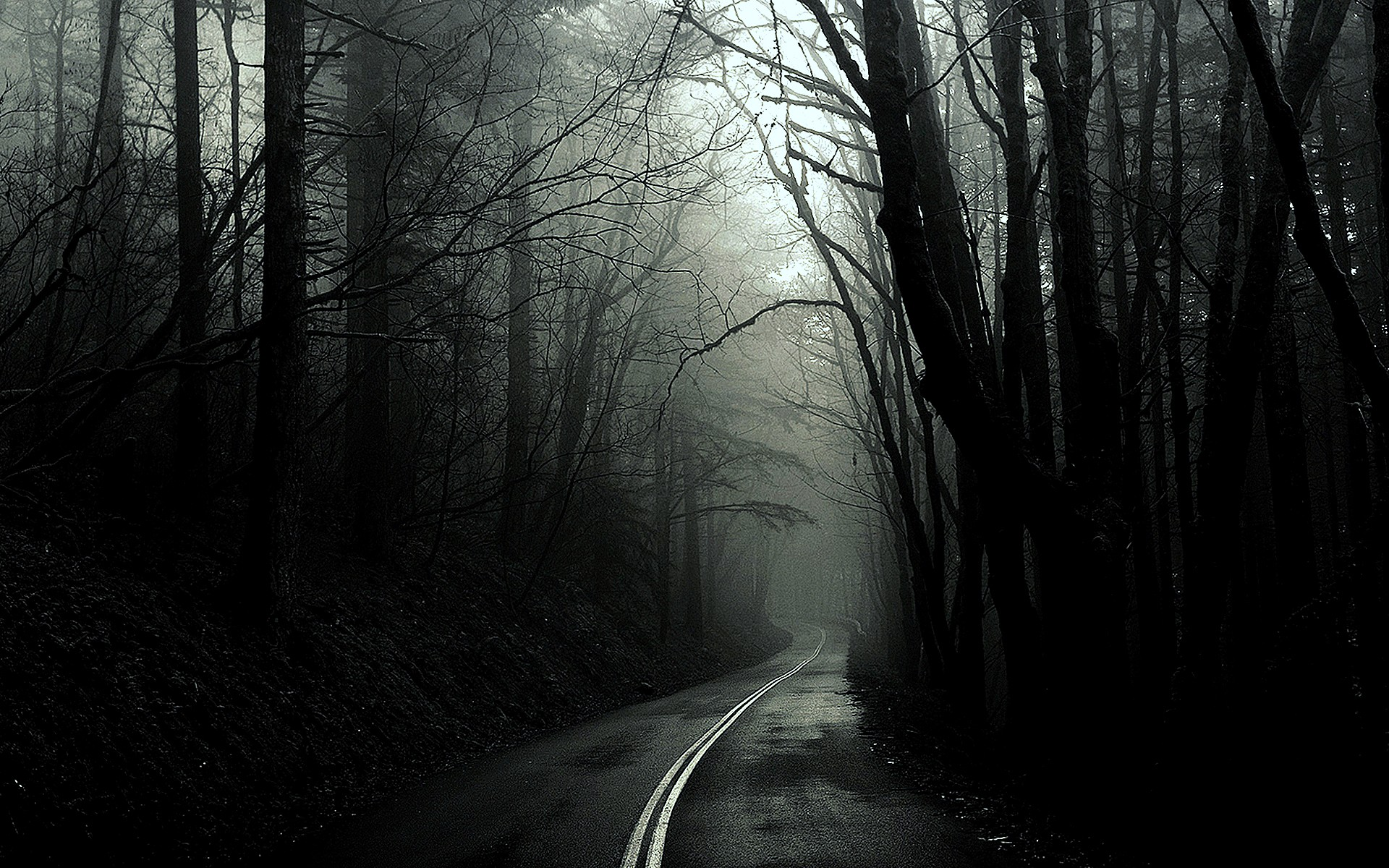 Black and white forest with road clipart.