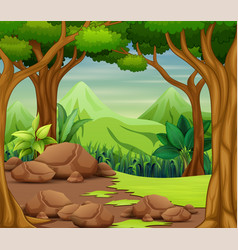 Scenery Clipart Forest Scene Vector Images (over 230).
