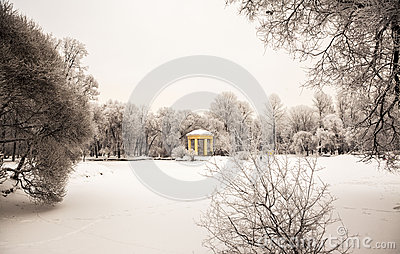 Beautiful Views Of Russian Winter Forest On The Shores Of Lake In.
