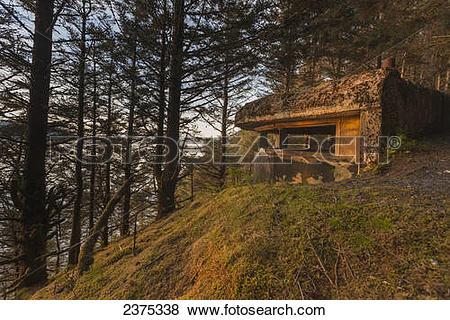 Exterior old military bunker forest Stock Photo Images. 17.