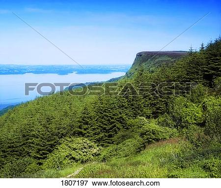 Picture of Cliff Over Lake, Cliffs Of Magho, Lough Navar Forest.