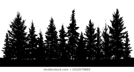 Forest Silhouette Png (101+ Images In Co #500873.