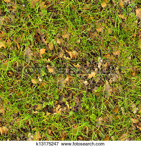 Stock Illustration of Forest Soil. Seamless Texture. k13175247.