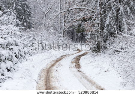 Portfolio di Madredus su Shutterstock.
