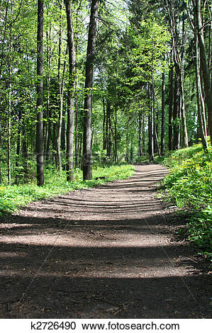 Stock Photography of Forest Trail k2726490.