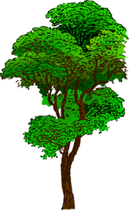 Clipart forest trees.