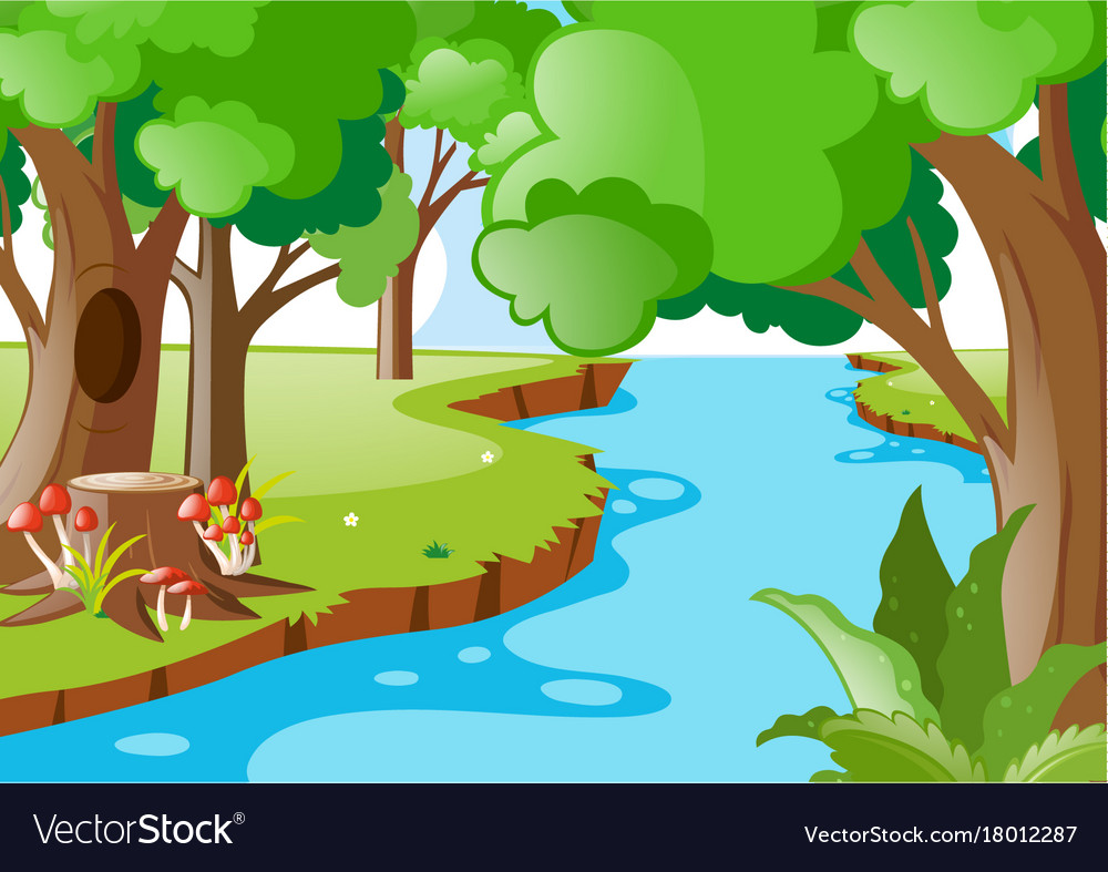 Nature scene with river in the forest.