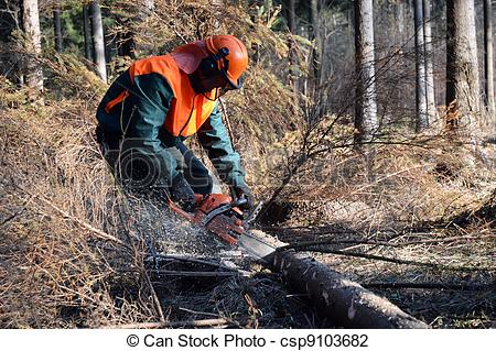Stock Photo of Lumberjack, forest work.