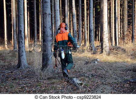 Stock Photo of Woodcutter walking in forest.