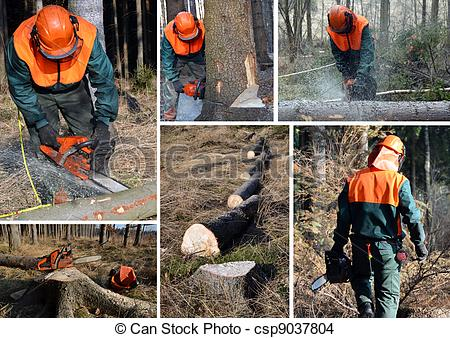 Stock Photo of Woodcutter, forest work set.