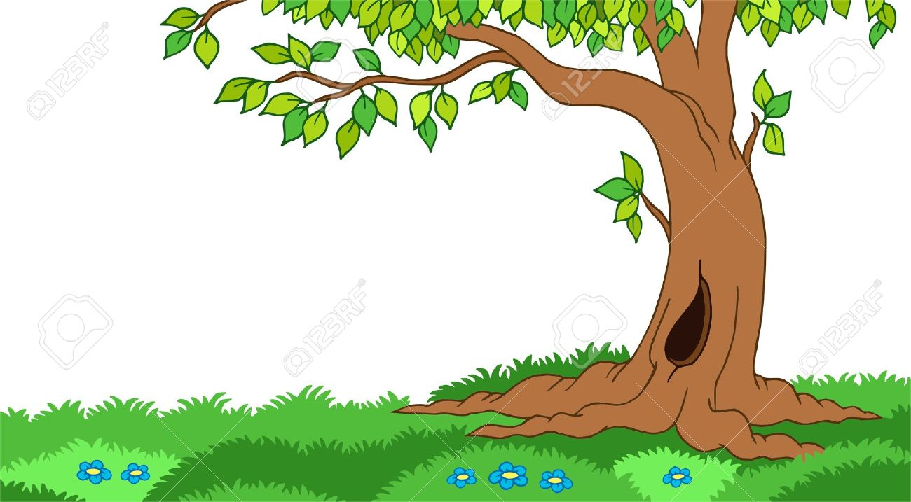 Forest Clipart Hd Clipground
