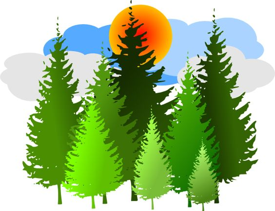 Forests Clipart.