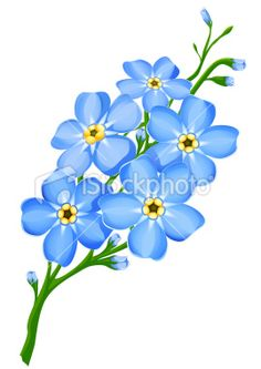 Forget Me Not Clip Art, Vector Images & Illustrations.