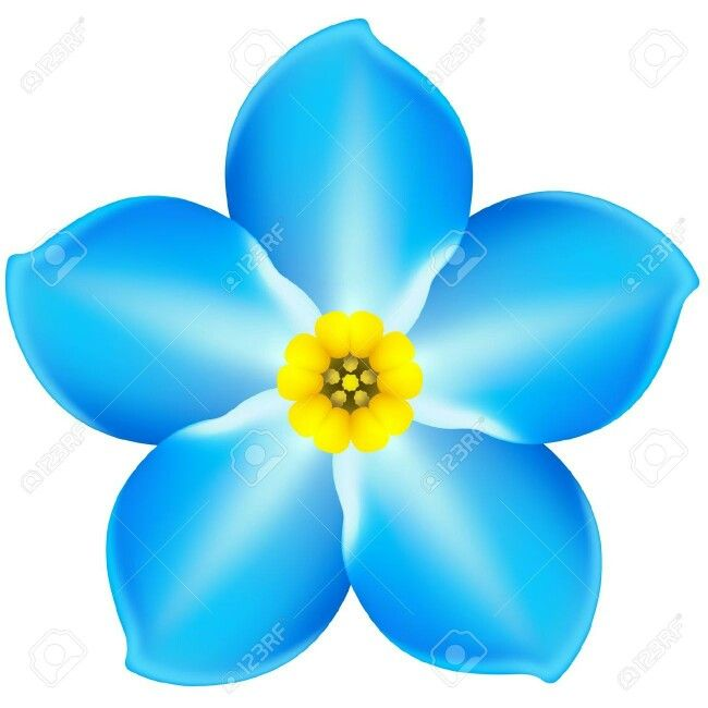 88 best images about Dementia: Forget me not on Pinterest.
