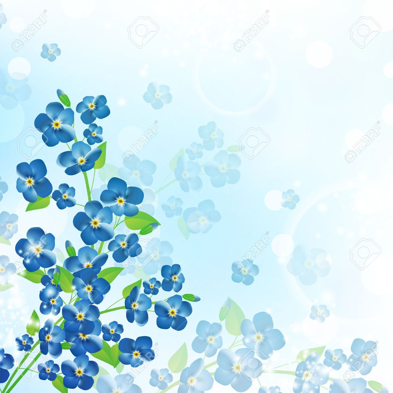 1,506 Forgetmenot Stock Vector Illustration And Royalty Free.