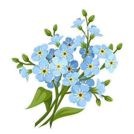 Forget me not clipart 2 » Clipart Station.