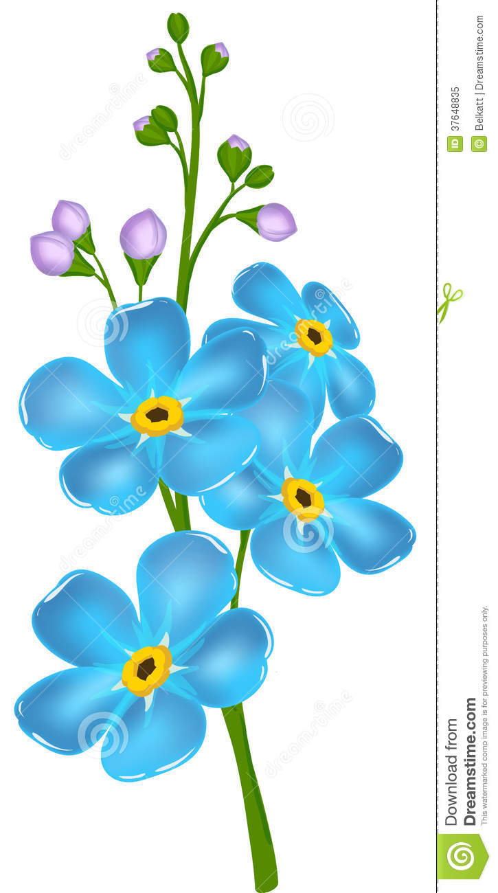Clipart of forget me not flowers.