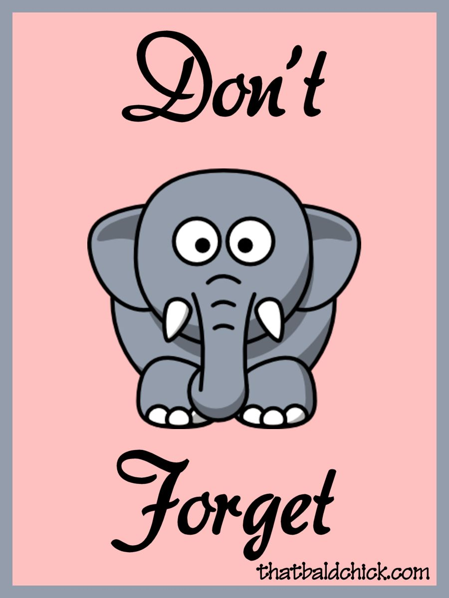 Elephant never forgets clipart.