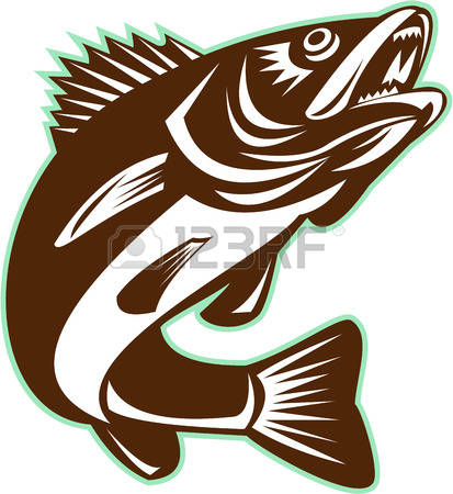 271 Walleye Stock Vector Illustration And Royalty Free Walleye Clipart.