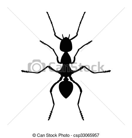 Clipart Vector of Insect anatomy. Silhouette Formica exsecta.
