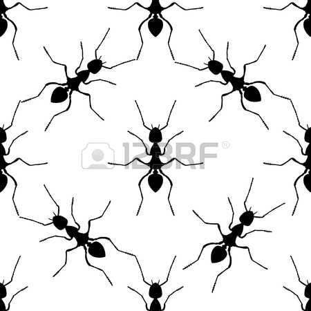178 Formica Stock Vector Illustration And Royalty Free Formica Clipart.