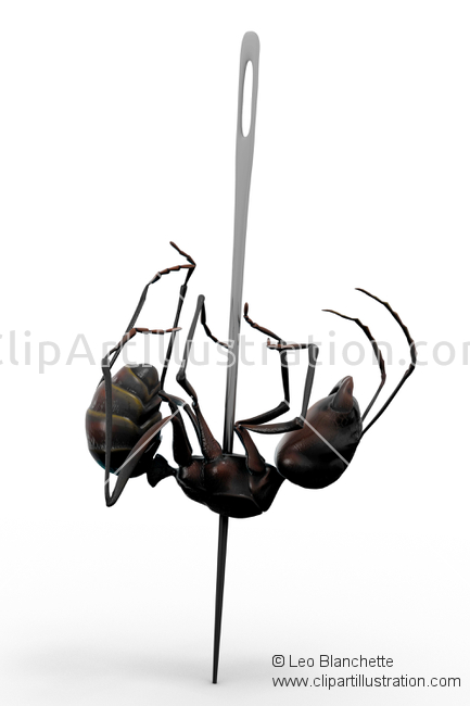 ClipArt Illustration Worker ant of family Formicidae Pinned and.