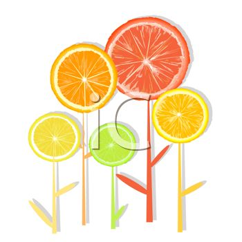 Royalty Free Clip Art Image: Good For You Citrus Fruit Sliced.