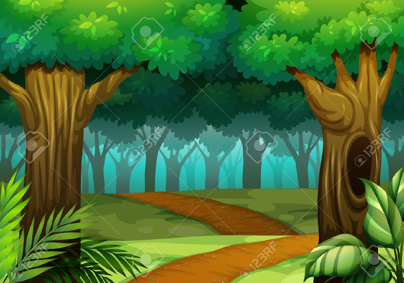 Forest scene with trail in the woods illustration.