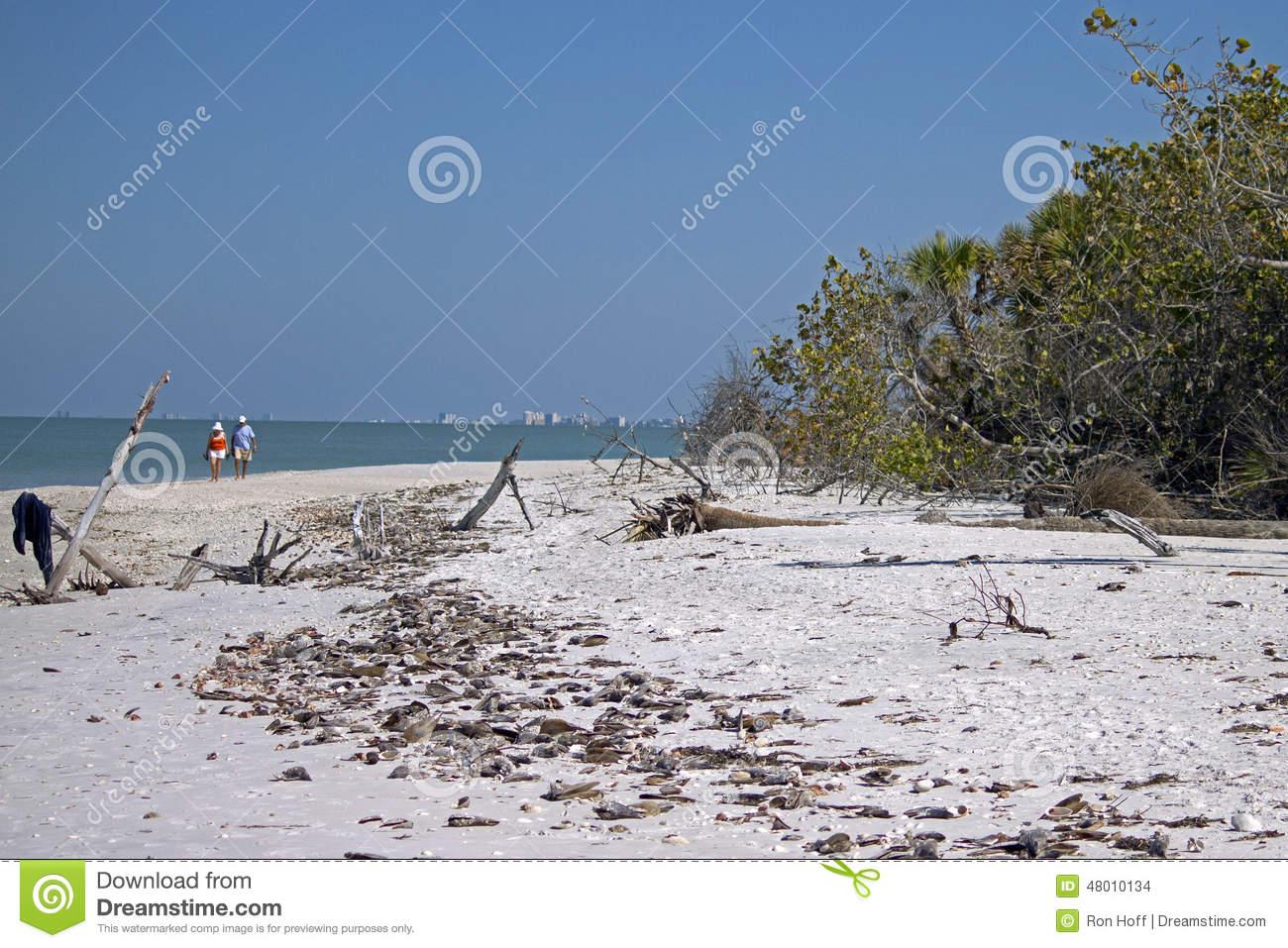 Barefoot Beach.